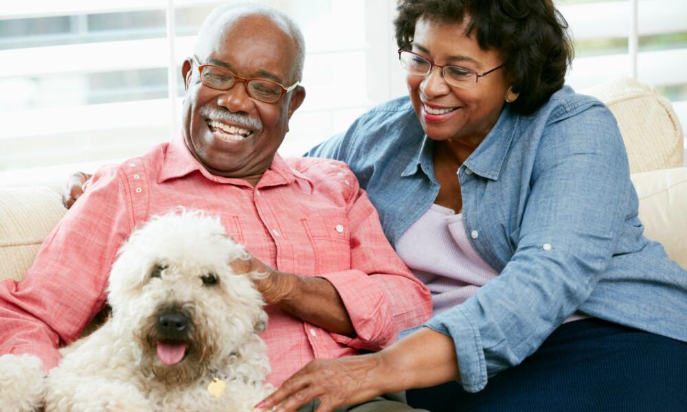 Senior adoption programs enrich the lives of pets, humans