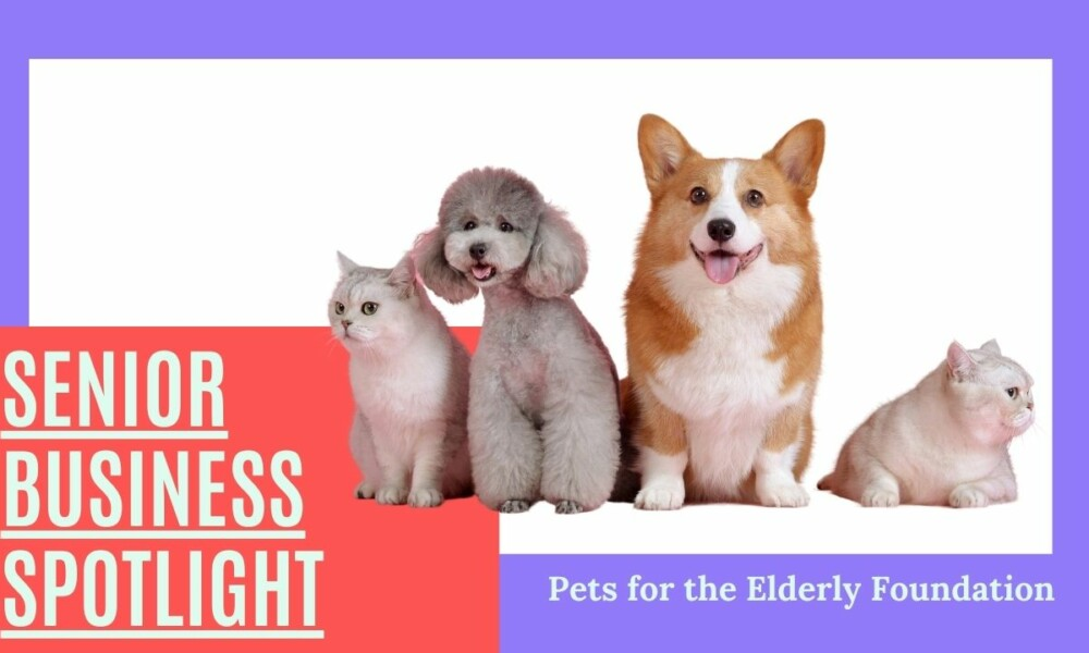 Interview with Susan Kurowski with Pets for the Elderly Foundation