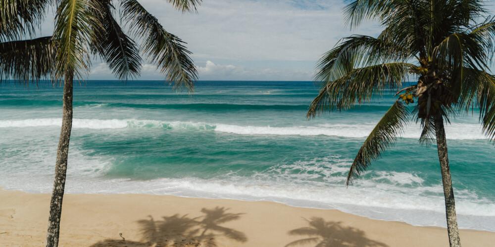Family Travel To Hawaii
